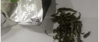 стевия чай